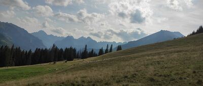 Rusinowa Polana [Panorama na Tatry Wysokie]